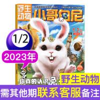 小哥白尼杂志野生动物画报2020年1.2月合刊 儿童科普期刊6-15岁百科书籍图解科学启迪智慧思维