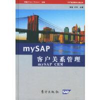 MYSAP客户关系管理