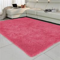 加厚毛毯地毯客厅欧式沙发前茶几地毯地垫卧室床边地毯家用