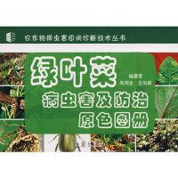 封面有磨痕-QD-绿叶菜病虫害及防治原色图册 商鸿生 9787508246581 枫林苑图书专营店
