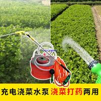 充电浇菜抽水泵户外野外农用家用便携式电瓶浇菜打药洗车喷雾水泵