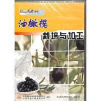 油橄榄栽培与加工DVD( 货号:78809860220497)