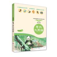 寻找大熊猫