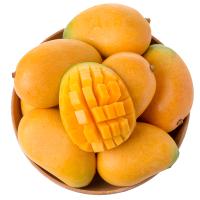 新果�M南�橙子新�r水果��季整箱甜橙果�龀裙��@�F摘�F�l5斤�b大果�喂��s200g