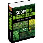 500种野菜野外识别速查图鉴 岳桂华,王以忠,于爱华 化学工业出版社