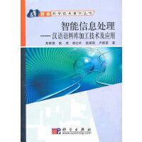 智能信息处理――汉语语料库加工技术及应用