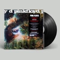 正版 Pink Floyd A Saucerful of Secrets LP黑�z唱片