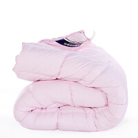 伊迪梦家纺 防羽冬被纤维冬被 羽丝绒填充加厚保暖被子被芯 简约纯色单人双人床型PV1037