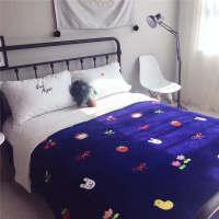 冬天毛毯被子双层加厚保暖毛绒毯子珊瑚绒单人宿舍学生盖毯双人