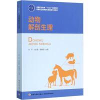 动物解剖生理 张平,白彩霞,杨惠超 主编