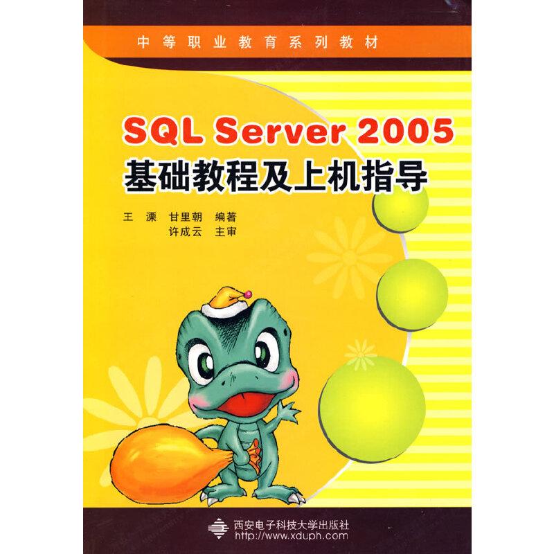 SQL Server 2005基础教程及上机指导 PDF下载